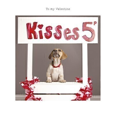 Doggy Kisses Valentines Card: Booker Flowers and Gifts