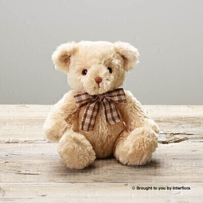 James Junior Teddy Bear: Booker Flowers and Gifts