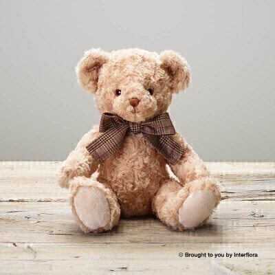 James Teddy Bear: Booker Flowers and Gifts