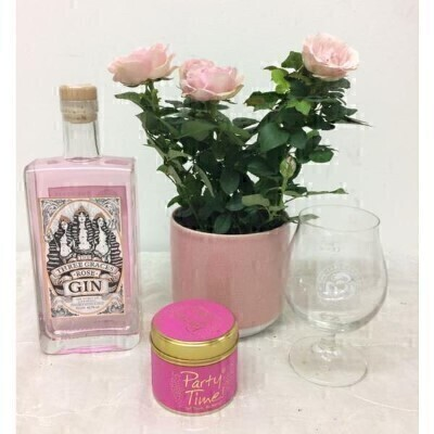 Pink Rose Plant Three Graces Gin and Party Time Candle Set: Booker Flowers and Gifts